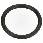Thermal Regulator Cap O-Ring