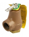 Pentair Pressure Relief Valve 50 psi 473715Z