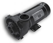 Waterway Spa Pump Executive 48 Frame 1HP Dual Speed 2 in. 115V