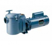 CF Series Commercial Pump w/ 6 in. Strainer- 2 HP-230V-Full Rated-Single Speed