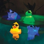 Light Up Floating Ducky Racers