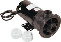Waterway Spa Pump Center Discharge 1HP Dual Speed 1-1/2 in. 115V