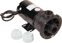 Waterway Spa Pump Center Discharge 1.5HP Dual Speed 1-1/2 in. 115V