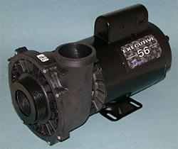 Waterway Spa Pump Executive 56 Frame 3HP Dual Speed 2-1/2 in. 230V