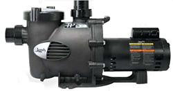 Jandy plushp pump phpf2 0 2hp 230v single speed pool pump for Jandy pool pump motor replacement