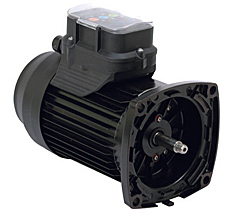 Swimming pool supplies pool heaters pool parts for Marathon electric motor parts