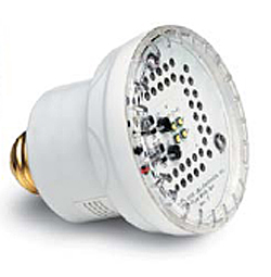 PureWhite2 LED White Pool Light Mini 120V for Pool & Spa